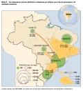 BrasilMigraciones